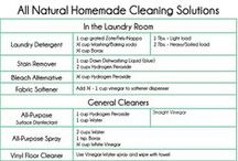 Healthy Green Home DIY / Natural / DIY options for cleaning, disinfecting, bugs/pests, etc for your house