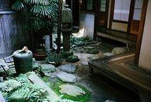 Architecture: japanese garden