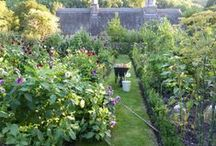 Niki's Garden Style / Inspirational ideas for gardens and outdoor spaces.