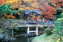 I Scan Japan / Interesting snapshots of my life in Japan, capturing what lies around the next corner.