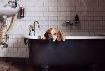 Bathroom / Home#design#bathroom