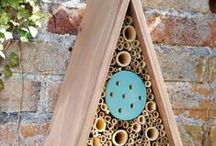 Casa para abejas y otros bichitos <3  House bees and insects