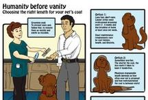 Pet Grooming comics and infographics from Groomerisms / Groomer humor inspired cartoons about dog grooming, cat grooming, and pet grooming in general.