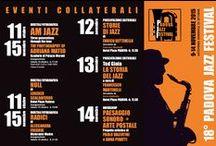 18° Padova Jazz Festival 2015 / Il 18° Padova Jazz Festival torna al Teatro Verdi di Padova dal 12 al 14 Novembre 2015 con Kurt Elling, The Bad Plus e Ameen Saleem.