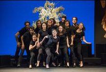 Accademia Palcoscenico del #TSVeneto / L'Accademia Palcoscenico diretta da Alberto Terrani ha iniziato il primo biennio il 10 novembre 1998. Oggi è una realtà conosciuta e apprezzata a livello nazionale nell'ambito della formazione professionale di giovani attori.