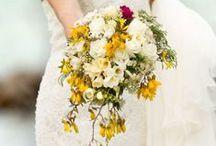 Bay of Islands Weddings