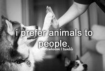 Animals / by Tia Jenson