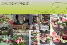 Blumenstängel by Susanne Mangold / Blumenstängel bietet ihnen auf Wunsch angefertigte Blumenkreationen. www.blumenstaengel.de oder 07071/5669440