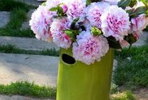 cobistyle outdoors / make the most of summer and take your decorating outdoors