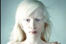 Without Color / Albinos / by Brent