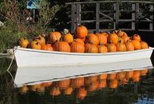 F A L L / Celebrating Fall in the Gardens with pumpkins and scarecrows / by Coastal Maine Botanical Gardens