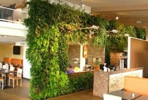 Living Walls / by Benjamin Proulx
