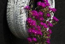 Jardins & Cia. / Idéias e dicas  para decoração de jardins. / by ERIKA V.