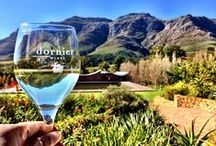 South African Wines / Glass of red wine please!