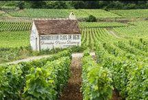 Vacances en Bourgogne. Locations classées meublés de tourisme / Présentation des locations de vacances officiellement classées de Bourgogne, lessites d'intêret de cette région.