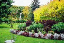 giardini italiani / I giardini più belli