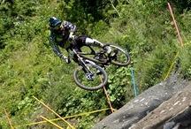 Downhill Mountain Bike Riders