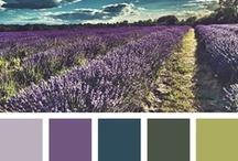 Color Inspirations / Palettes