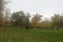 Parque de las Cruces / Parque de las Cruces (Carabanchel - Aluche)