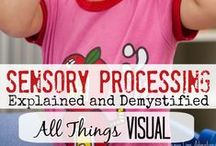 Visual Processing {Sight} / Activities, Games and Resources Related to Visual Sensory System... Everything from visual planning to visual games such as ISPY, Look and Finds, and so much more