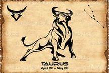 ZODIAC / zodiac