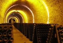 Wine   Vin / by Voir Ci-Contre