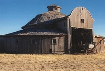 All Kinds of Barns / by Maggie Scallion