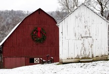 My Love of Barns / by Cathy Nulliner