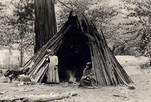 4th grade RP2, Pre-history & Native Americans of CA / 4th Grade, thematic unit on pre-history of CA, Native American tribes in CA. Use with Homeschooling: Science- Habitats and Biomes / by Joanne Woolf