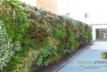 Lush Vertical Gardens