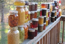 Canning, Yummy Gifts & Ball Jars / by Kathryn Amble