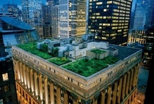 Great Green Roofs