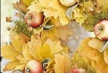 Pumpkins and Thanksgiving