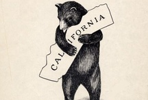 California / by Shelby Lavender