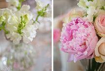 {Decor and Flowers} Niki M Photography / Beautiful Decor Ideas