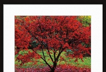The Seasons in Art / http://www.artsperfect.com/ecom-catshow/Seasons.html
