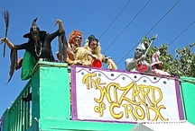 Mardi Croix 2013 / Some of the participants of Mardi Croix 2013 as they  goes right past the eat at canebay