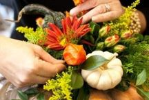 Thanksgiving Recipes & Decorating Ideas / by Rochelle Hyde