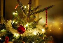 ✻☃✻ Christmas ✻☃✻ / by •★Sandi Bing★•
