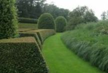 The Wonderful World of Wirtz / Amazing Gardens
