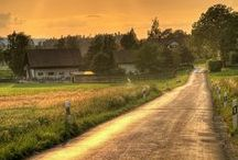 Country Life / Things related to Country life / by Artista