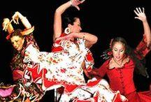 Art - Flamenco - The Passion Dance. / - Vestidos, Mantones, Mantillas, Peineta, Flor en el cabello(pello),  Abanicos, Castanetas, Zapatos y la belleza de la danza.  / by Maria Helena Rodrigues Penteado