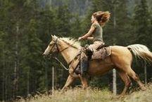 horses / my wild love went riding