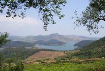 The Charisma of Karnataka