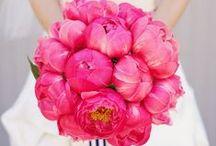 Bouquet de la mariée  / by We Planners