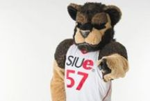 SIUE Athletics / Our NCAA Division I student athletes compete at the highest level of competition.