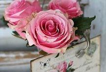 gris et rose