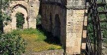 l'abbandono: strutture e ...