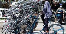 Bicicletta: cosa trasporto