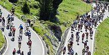 Bicicletta: la gara